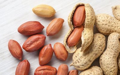 Are Peanuts bad for those who want to lose weight?